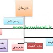 organization chart design
